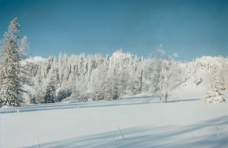 Озеро Зюраткуль зимой (11.03.2013)